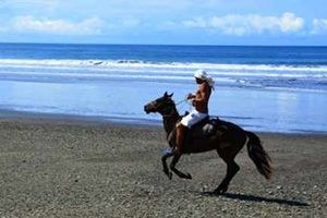 Jaco Horseback Beach Riding